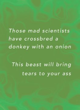 Those mad scientist have crossbred a donkey with an onion. This beast will bring tears to your ass
